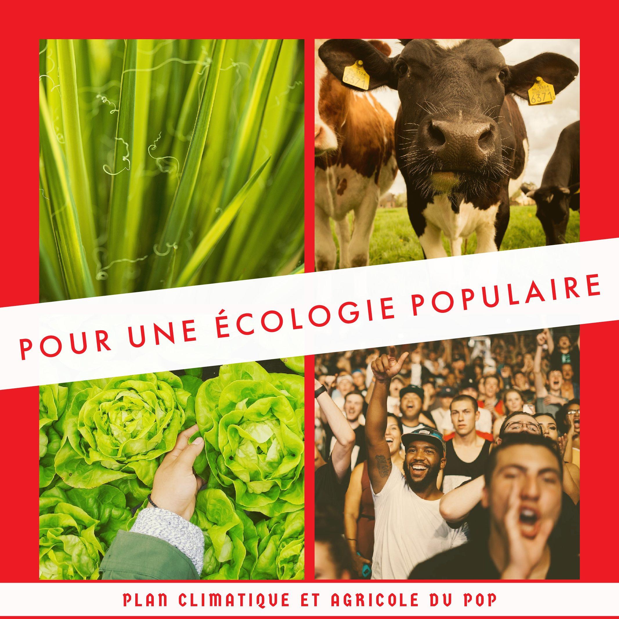 Pour une écologie populaire : communiqué et programme